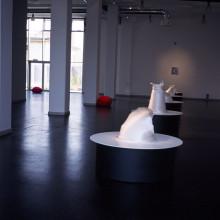 Kunsthalle Feldbach, Steirischer herbst, 1999